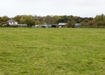 Exercise field